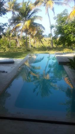 Vanilla View: Pool