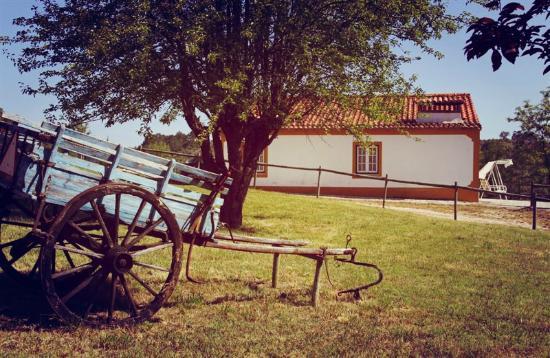 Quinta Da Alcaidaria-Mor : Casinha do Alambique