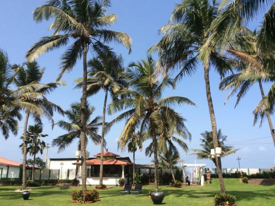 Hotel Goan Heritage: Vue du parc , au bout il y a la plage