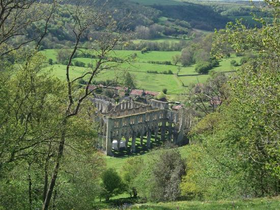 Yorkshire Terrace: From The Terrace Overlooking Rievaulx Abbey