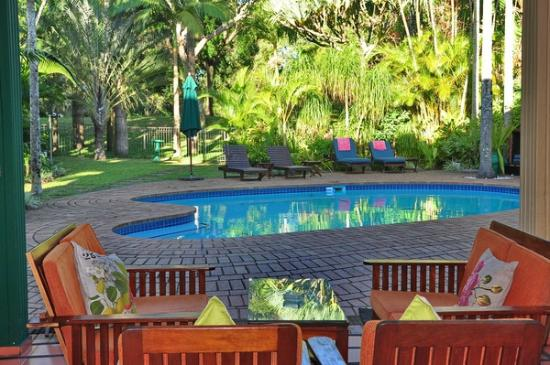 Avalone Guest House: Sip a cold drink next to the pool whilst watching the wildlife pass through