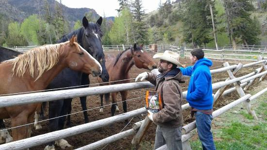 Blackwater Creek Ranch: Staff at the corral
