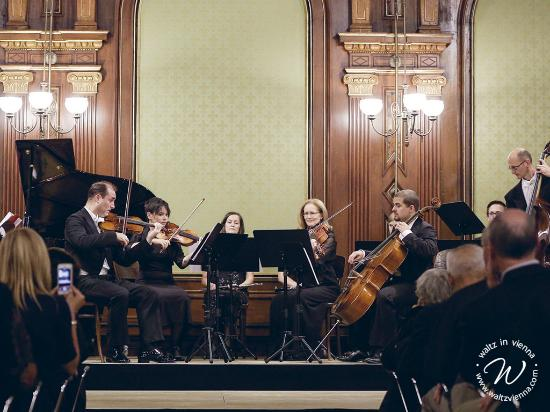 The Private Concert Series by waltz in vienna