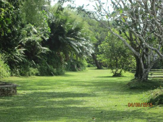 Lunuganga: garden