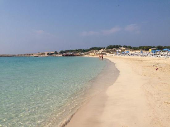 Asterias Beach Hotel: Шикарный пляж
