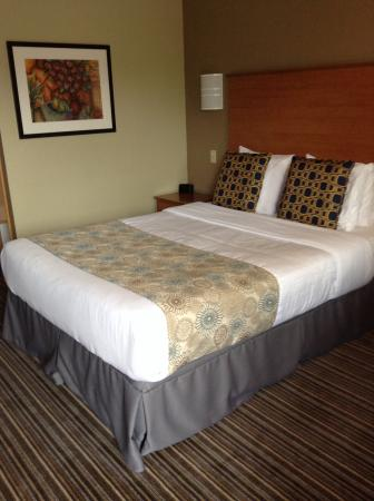 Nordic Inn and Suites: Bedding seemed newer, with memory foam pillows.