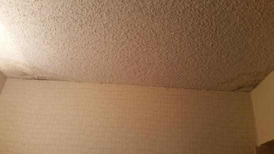 Doubletree by Hilton Hotel: Mold in the bathroom ceiling