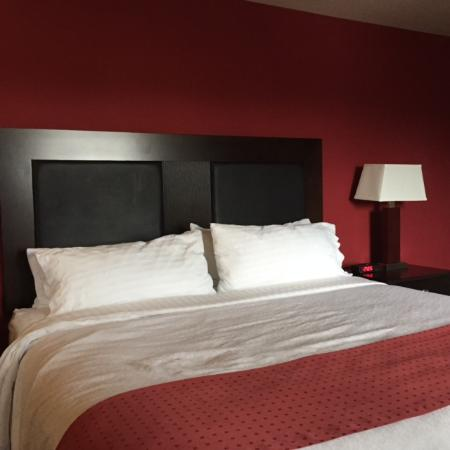 Holiday Inn Hotel & Suites Anaheim - Fullerton: Bed