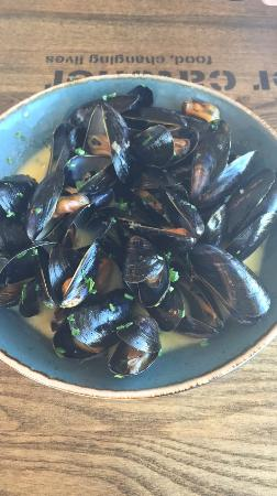 The Oyster Catcher: Mussels to start
