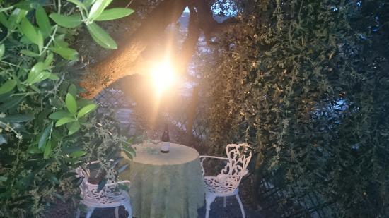Peiranze 144 Bed and Breakfast: aperitivo sotto l'ulivo