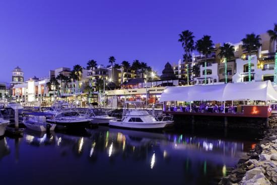 marina fiesta resort spa updated 2019 prices reviews cabo san rh en tripadvisor com hk
