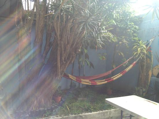 Castle Tam Hostel: Garden