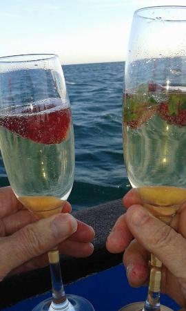 Trigana Boat Trips : Bubbly on board