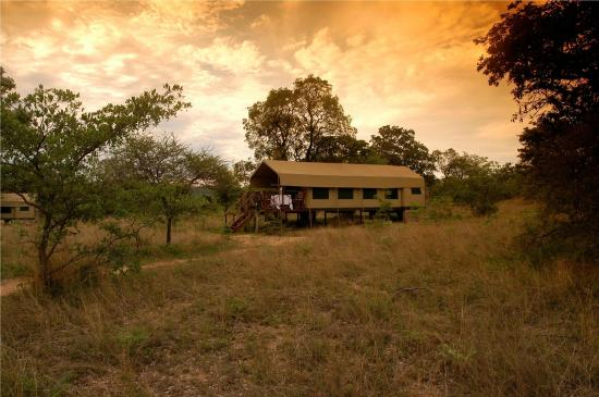 Kwafubesi Tented Safari Camp: Tented Camp