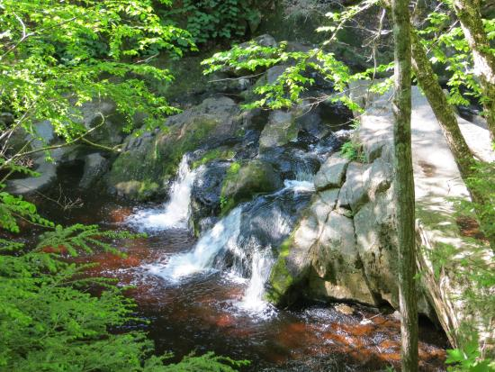 Enders Falls: One of the falls