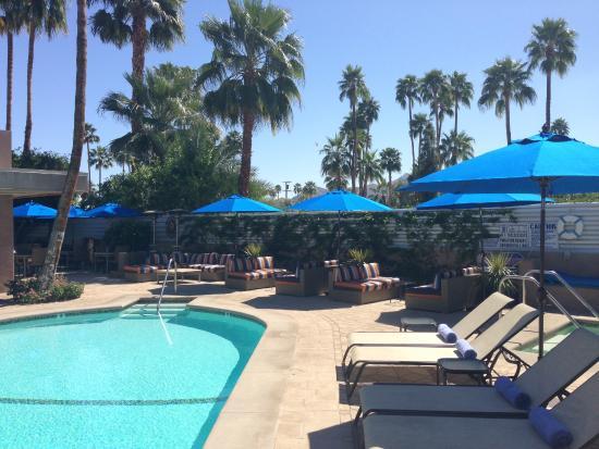 Pura Vida Palm Springs: Pool Deck