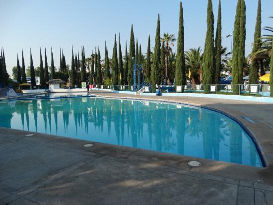 Foto De Hotel Splash Inn Leon Piscina Principal Tripadvisor