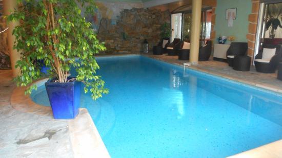 Hostellerie des Criquets : piscine