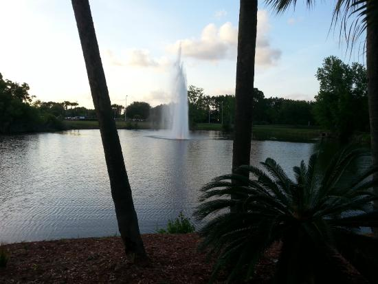 Doubletree by Hilton Hotel Jacksonville Airport: view from dining room/bar patio