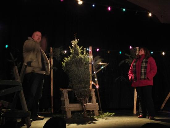 New Curtain Theatre: THE CHRISTMAS TREE - Dec 2014