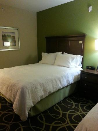 Hampton Inn & Suites Rochester / Henrietta: Lovely Room!