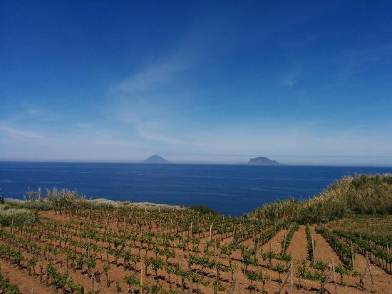 Capofaro Malvasia & Resort : Paradise