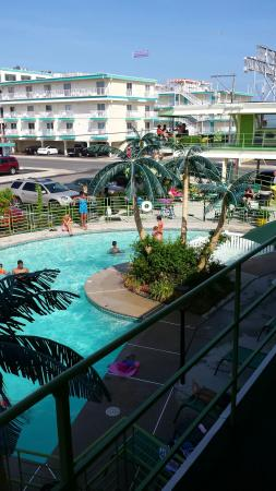 Caribbean Motel: Our favorite family vacation motel. The most amazingly professional staff and owners and the cle