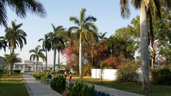 Nehru Park: nice trees