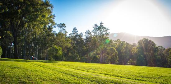 Elfin Hill: fantastic vista