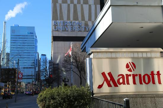 Toronto Marriott Downtown Eaton Centre Hotel Review