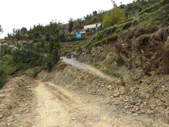 Whispering Pines Himalayan Retreat Dhanaulti Indien Omd Men Och Prisj Mf Relse Tripadvisor
