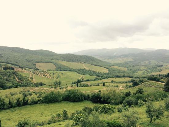 Foto de Scenic wine tours in Tuscany