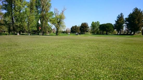 Golf Grand Avignon: Trou n*13