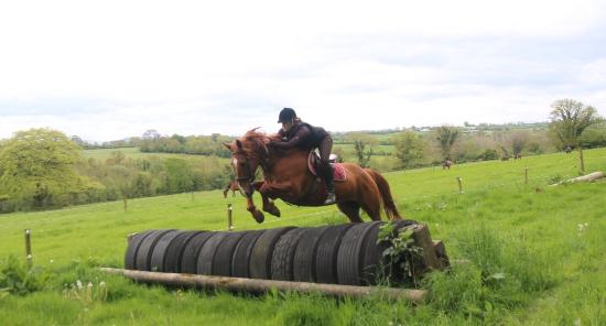 Crossogue Equestrian Centre