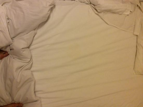 Pontiac Hotel : If you look closely, you can see a weird round stain of something yellow on the sheets..... Urin