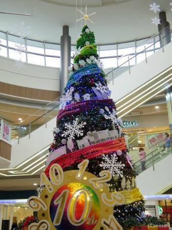 Aeon Mall Fukuoka : クリスマスツリー