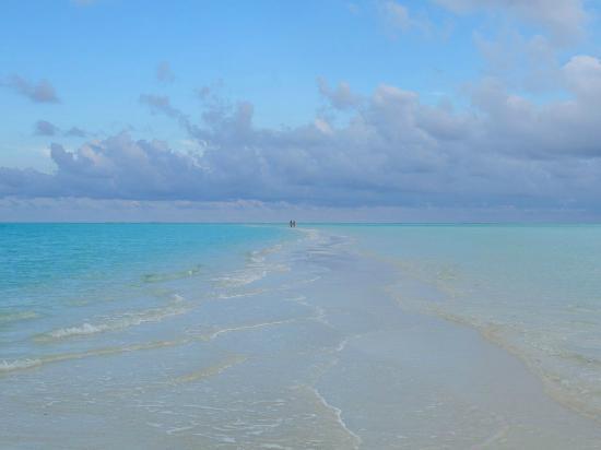 Cocoa Island: I colori di Cocoa