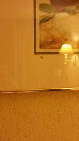 Hesston, Κάνσας: Spiders inside the picture frame!!!!
