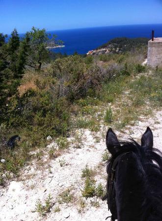 - El valle de los caballos ...