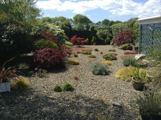 O'Driscoll's Bed & Breakfast: O'Driscoll's B&B Garden
