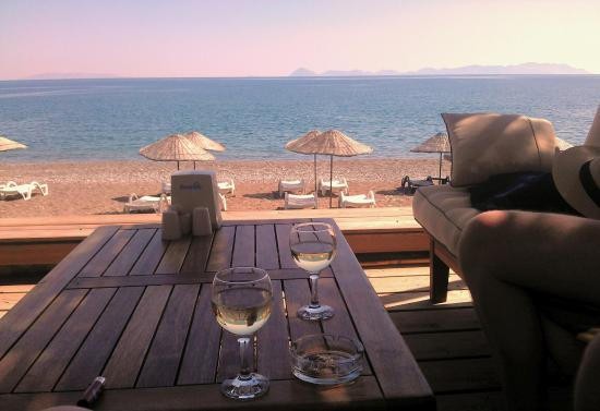 Ova Pansiyon: Wine with a view