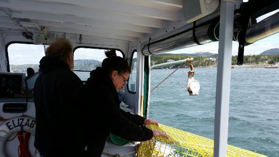 Sail Acadia: Lobster cruse with Captain Dan