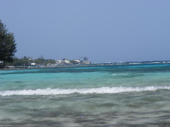 Hotel Utila: The beautiful waters.
