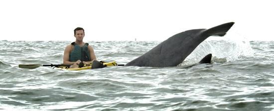 Kayak Nature Tours Ltd Virginia