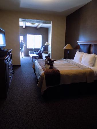 Stoney Creek Hotel & Conference Center - Sioux City: King Suite