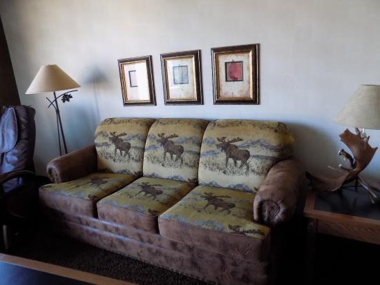 Stoney Creek Hotel & Conference Center - Sioux City: sofa