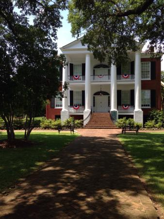 Natchez, Μισισιπής: Magnificent weather for a tour today!!!