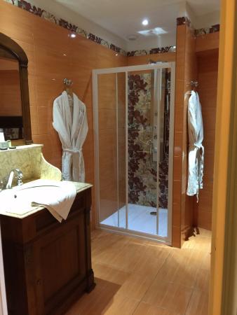 Hotel de Paris : Superb shower room