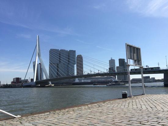 Another view of the bridge - Picture of Erasmus Bridge ...