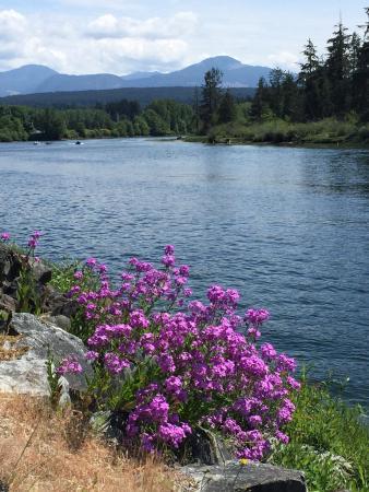 Taylor Arm Provincial Park